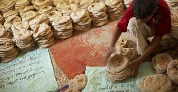 A boy divides cooled baladi bread into twenty loaf stacks, (the daily ration) at the El Beayrat bakery outside of Luxor, Egypt. Over three thousand pieces of bread are produced at this bakery each morning. In Egypt, flour is fortified with essential micronutrients to help combat widespread anemia. Introduced in 2008 with support from United Nations World Food Program, Global Alliance for Improved Nutrition (GAIN), and the Egyptian Ministry of Social Solidarity, the program adds iron and folic acid to baladi bread - the staple food of Egyptians.