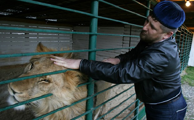 Russia-Chechnya Conflict: A Lion Waiting to Roar?