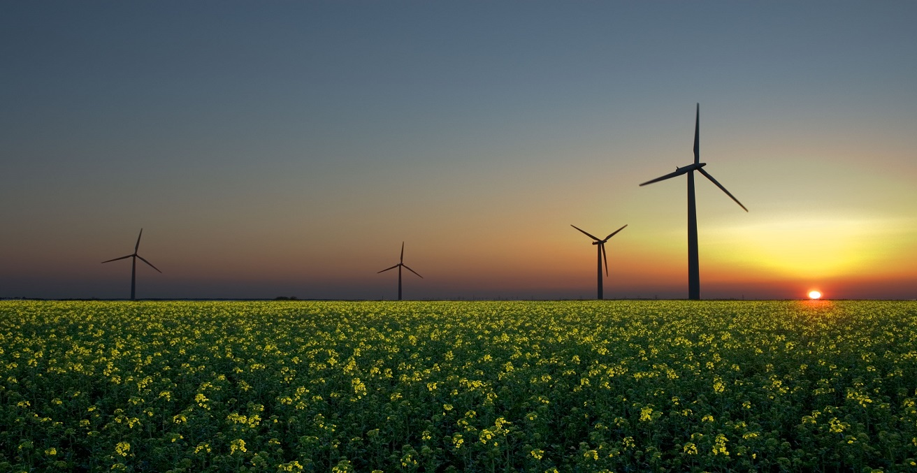 Early morning on a wind farm