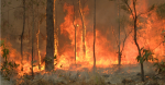 Bushfire at Captain Creek in Central Queensland. Source: 80 trading 24 https://bit.ly/33q1t9f