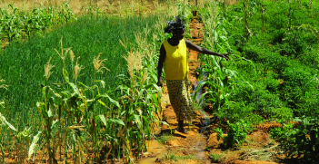 A female farmer from Burkina Faso growing vegetables.