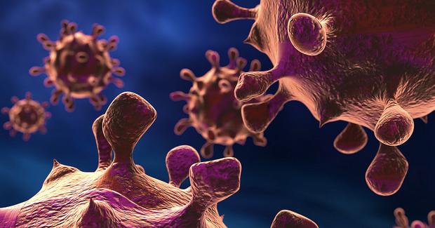 bacteria. Photo Credit: John Voo (Flickr) Creative Commons