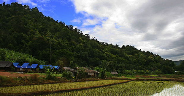Thailand Rice Photo Credit: Martin-Manuel Beauine (Wikimedia Commons) Creative Commons
