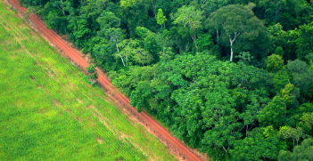 An aerial shot shows the contrast between forest and agricultural landscapes near Rio Branco, Acre, Brazil. Source: Flickr - CIFOR https://creativecommons.org/licenses/by-nc-nd/2.0/legalcode