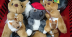 Kangaroo, koala soft toys AUD10 for 3 - Australia Map Souvenirs, Melbourne - Flickr: Alpha