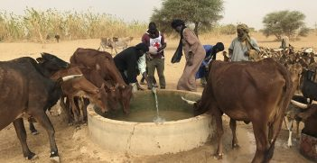 Kidal. Thanks to this drilling, the shepherds can water their herds without travelling several kilometers. The ICRC continues its efforts in the region to facilitate access to water for vulnerable communities and their animals. Photo supplied by the ICRC.